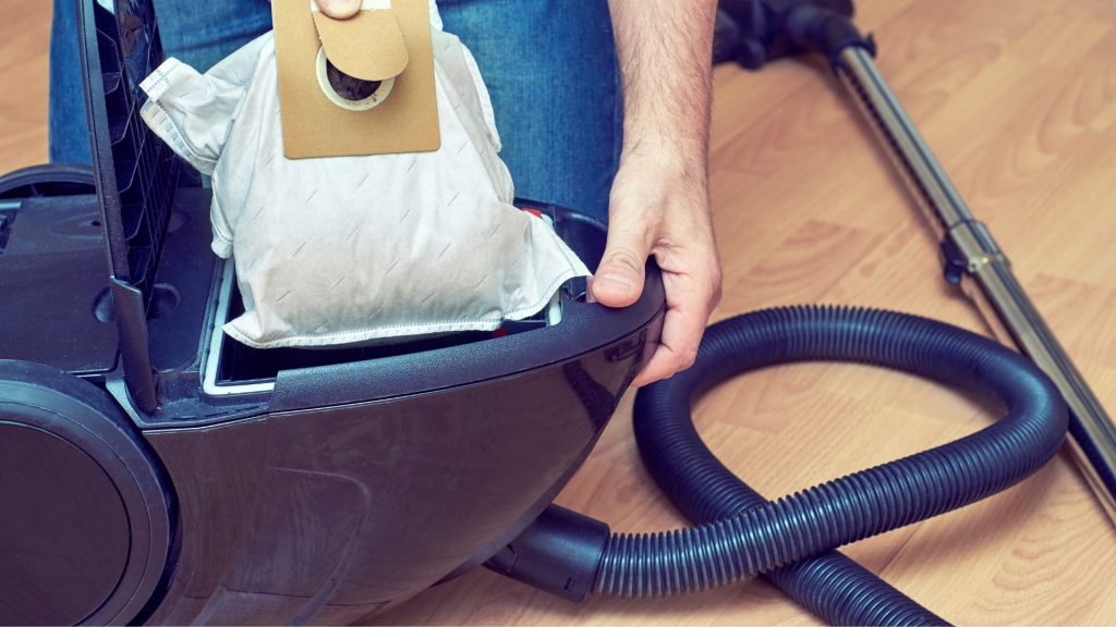 Can Bed Bugs Live In Vacuum Cleaners
