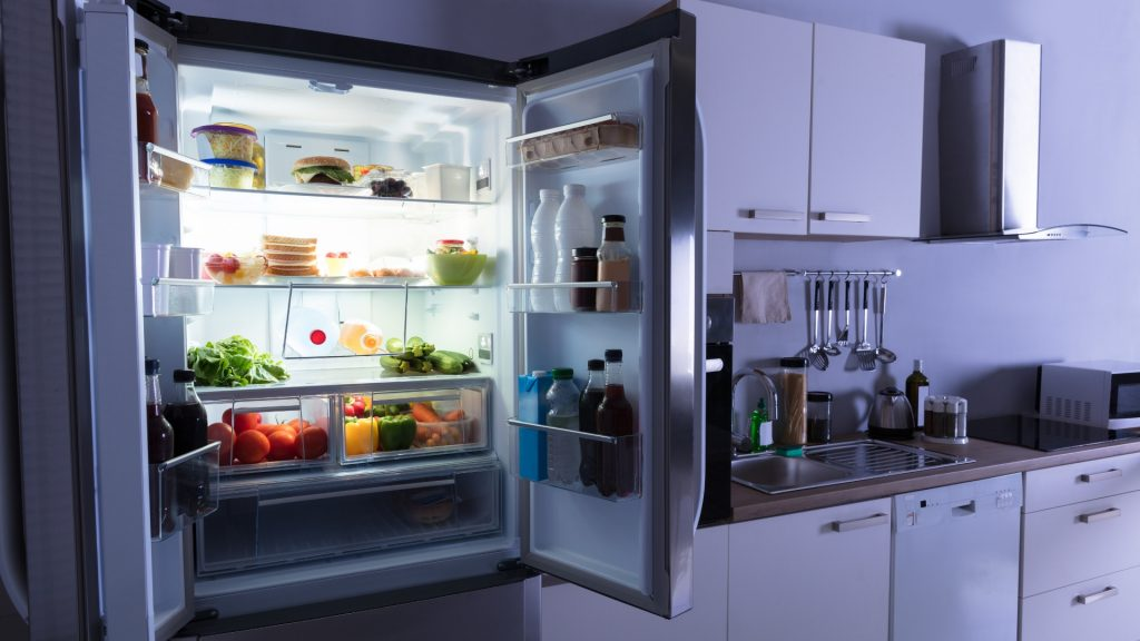 Can Bed Bugs Live in Refrigerator