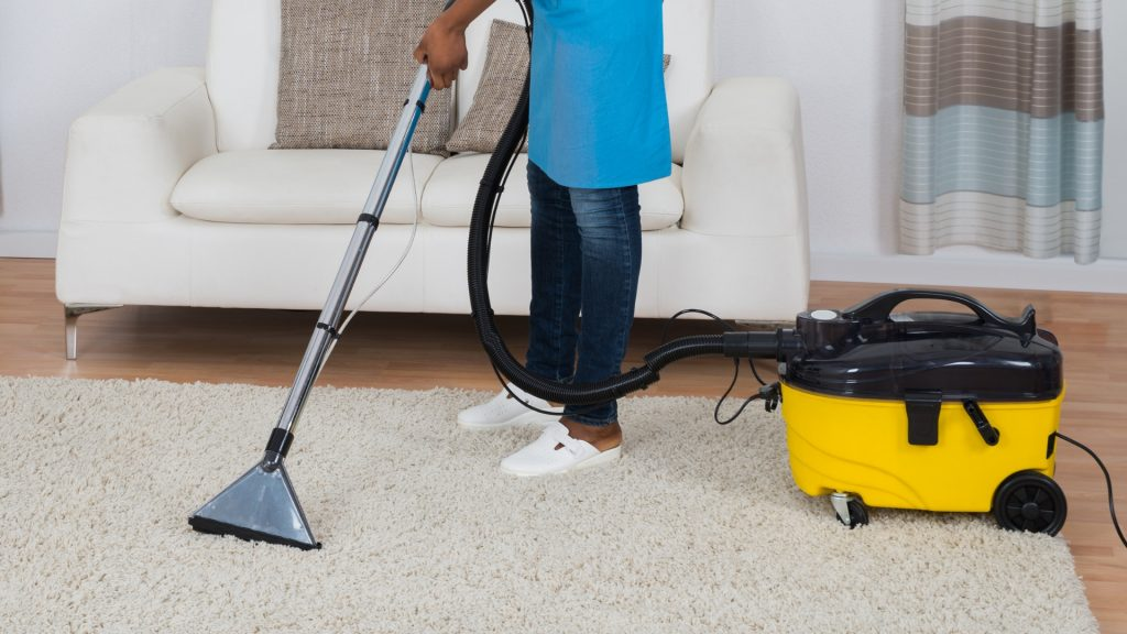 Bed Bugs In Carpet Can Bed Bugs Live In Carpet Pest