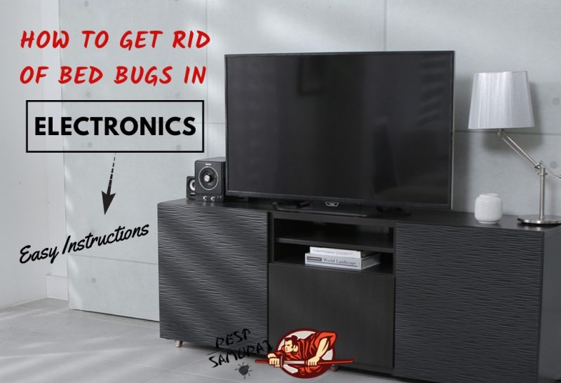 How to Get Rid of Bed Bugs in Electronics - Easy Instructions