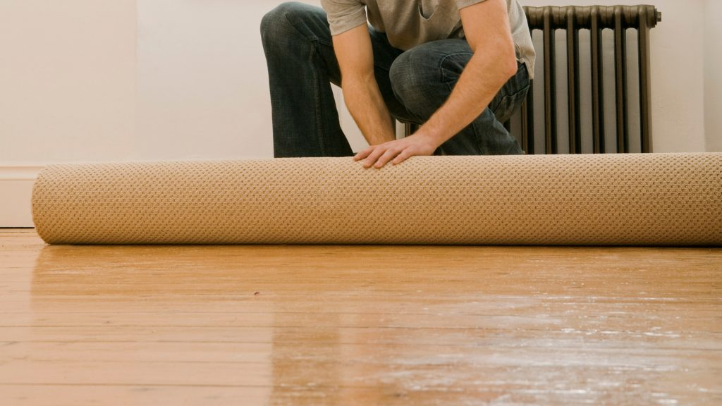 How to Tell if Your Carpet is Infested with Bed Bugs