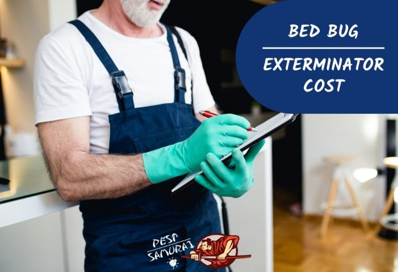 Bed Bug Exterminator Cost A Helpful Treatment Price Guide