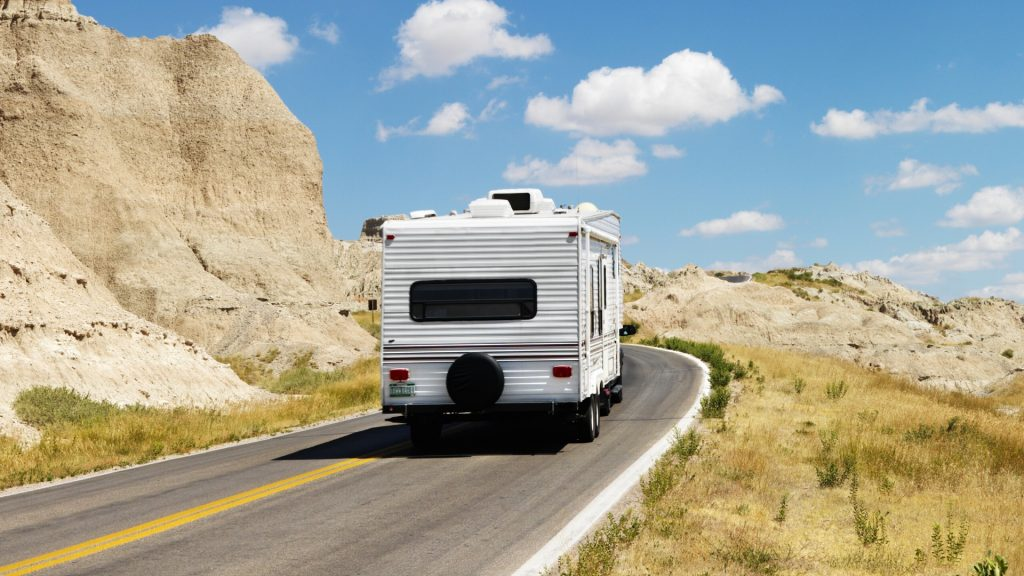 How to Get Rid of Ants in RV
