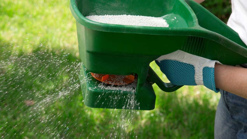 Will Insecticides That Kill Ants Damage Your Lawn