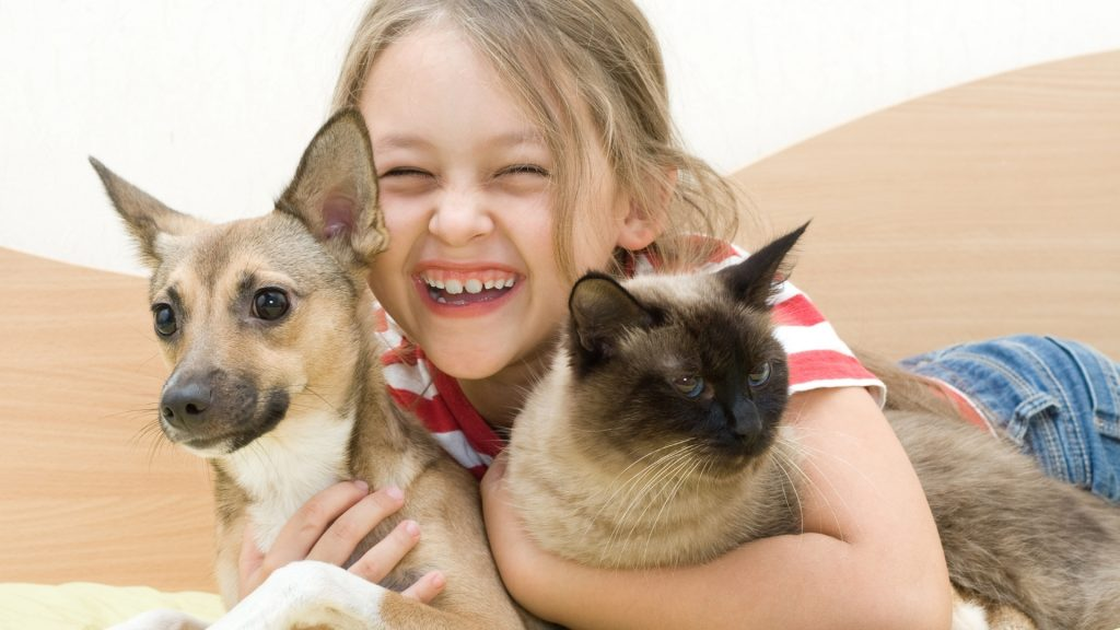 Can Ant Spray Harm Dogs, Cats, and Other Pets