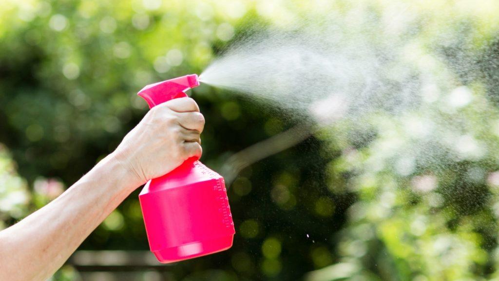 Best Deer Repellent Sprays