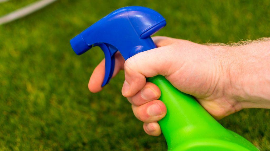 Best Flea Spray for Yard