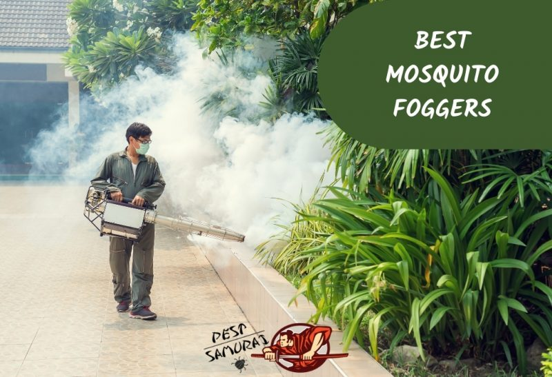 Best Mosquito Foggers