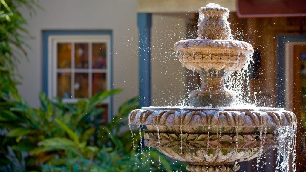 How Do I Kill Mosquito Larvae in My Fountain