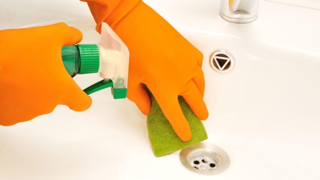 How To Get Rid of Drain Flies in Bathroom