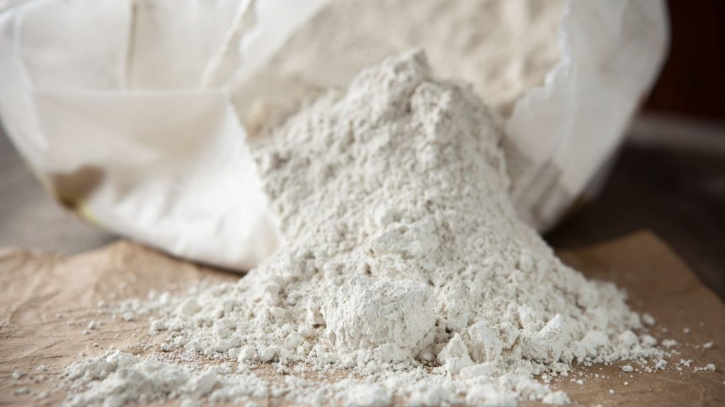 What-Is-Diatomaceous-Earth