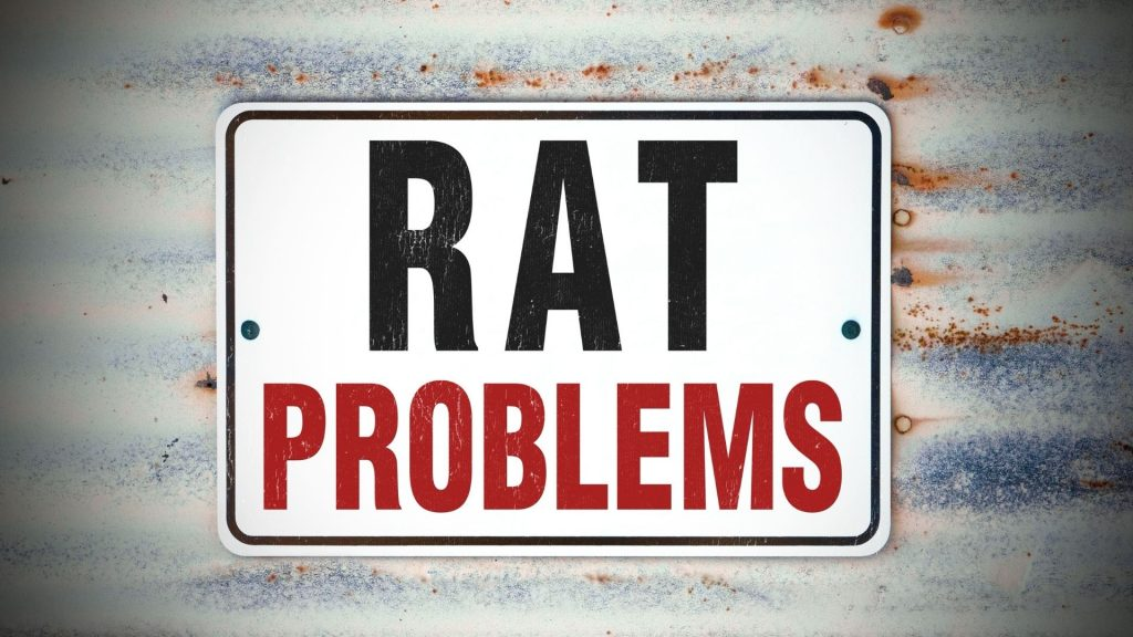 Why Are Rats a Problem
